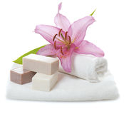 Herbal spa soap Royalty Free Stock Photo