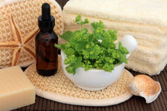 Herbal Spa Treatment Royalty Free Stock Photo