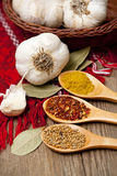 Herbal spices and garlic stock image