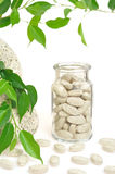 Herbal supplement pills and fresh leaves Royalty Free Stock Images