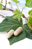 Herbal supplements Royalty Free Stock Images