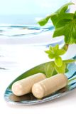 Herbal supplements Royalty Free Stock Photography