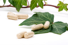 Herbal supplements Stock Images