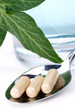 Herbal supplements Royalty Free Stock Photos