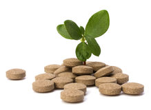 Herbal tablet Stock Photography