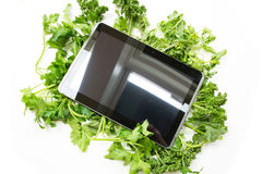 Herbal Tablet PC Royalty Free Stock Photo