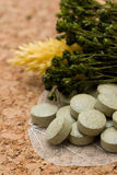 Herbal tablets Stock Images