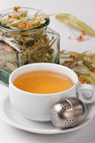 Herbal tea. Stock Image