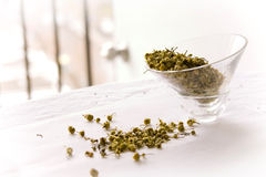 Herbal Tea. On a plate Royalty Free Stock Image