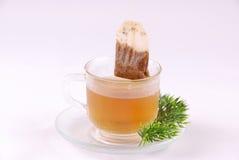 Herbal tea Stock Photography