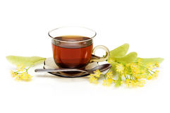 Herbal tea. With Linden in glass cup over white background Stock Image