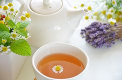 Herbal tea break Stock Photography
