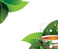 Herbal tea. Cup of herbal tea on a white background Stock Photo
