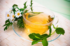 Herbal tea. With chamomile and fresh mint leaves stock image