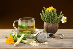 Herbal tea. Stock Images