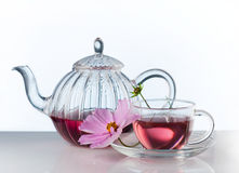 Herbal tea Stock Photography