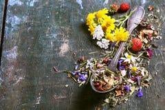 Herbal Tea Royalty Free Stock Photo