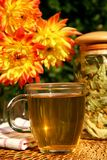 Herbal tea Royalty Free Stock Image