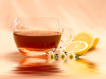 Herbal Tea. With water element, very soothing royalty free stock photos