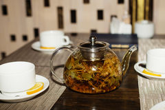 herbal tea with aroma fresh herb Stock Photography