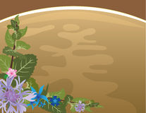 Herbal tea background Stock Image