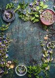 Herbal tea background with various fresh healing herbs and flowers , strainer and cup of tea, top view. Frame stock photos