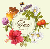Herbal tea banner Royalty Free Stock Images