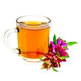 Herbal tea with bergamot in glass mug Stock Photos