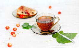 Herbal tea and biscuit cake Royalty Free Stock Photography