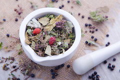 Herbal tea with blackberry in the white mortar Stock Photography