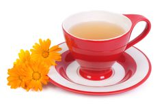 Herbal tea with calendula flowers isolated Royalty Free Stock Photography