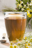 Herbal tea. Camomille Royalty Free Stock Images