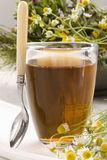 Herbal tea. Camomille Royalty Free Stock Photo