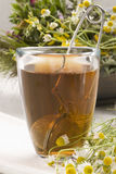 Herbal tea. Chamomile Stock Photos