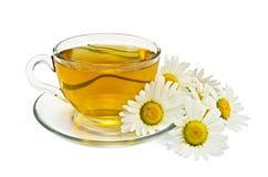 Herbal tea with chamomile Stock Photos