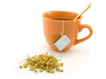 Herbal tea and  chamomile Stock Images