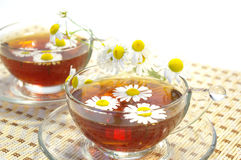Herbal tea and chamomile blossoms Stock Photography