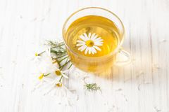 Herbal tea with chamomile in a tea Cup on white Royalty Free Stock Photos