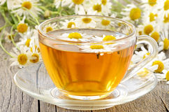 Herbal tea with chamomile flowers Stock Photos
