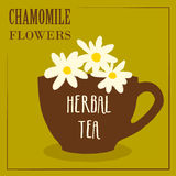 Herbal tea with chamomile flowers. The design of the label Stock Images
