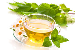 Herbal tea. With chamomile and fresh mint leaves royalty free stock photography