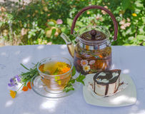 Herbal tea and chocolate cake. On a table in the garden Royalty Free Stock Photography