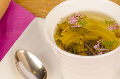 Herbal tea closeup royalty free stock image