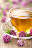 Herbal tea and clover flowers Stock Images