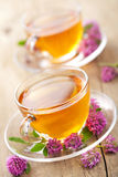 Herbal tea and clover flowers Stock Photos