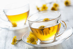 Herbal tea with coltsfoot flowers Royalty Free Stock Image