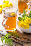 Herbal tea with coltsfoot flowers Royalty Free Stock Photography