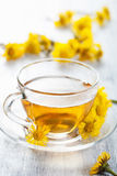 Herbal tea with coltsfoot flowers Stock Photos
