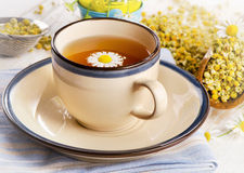 Herbal tea cup with chamomile . Stock Photos
