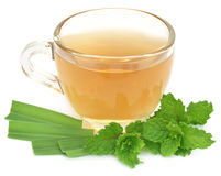 Herbal tea in a cup Stock Image